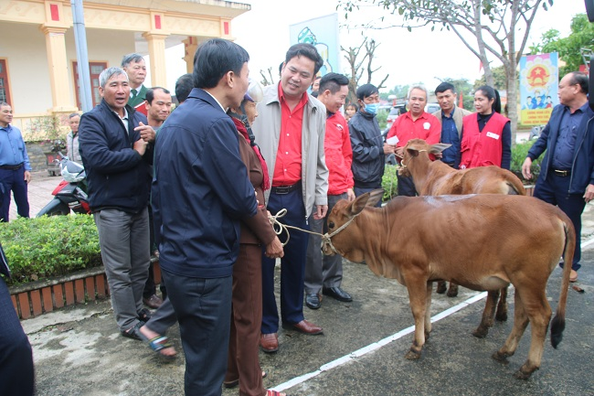 Hội Chữ thập đỏ trao bò giống sinh sản cho bà con khó khăn xã Kỳ Tây